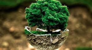 Energías renovables en Instalaciones Boro